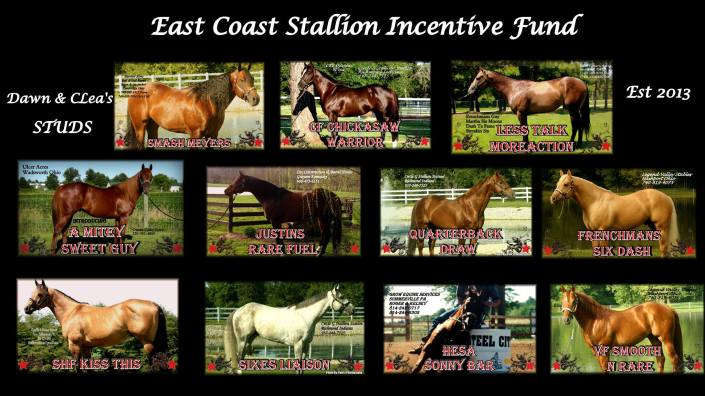East Coast  Stallion Incentive Fund
