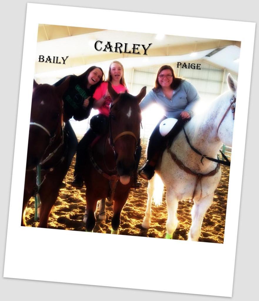Carley baily